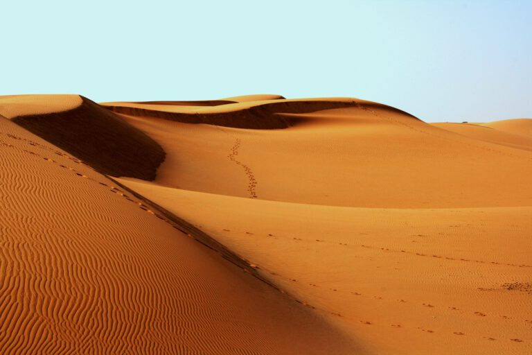 Desert Sand